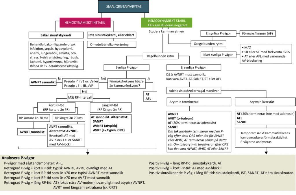 Figur 61. Handläggning av smala QRS-takyarytmier.