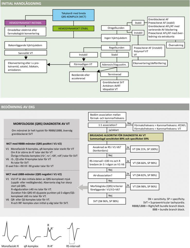 Figure 62. Diagnostik och handläggning av takyarytmi med breda QRS-komplex.