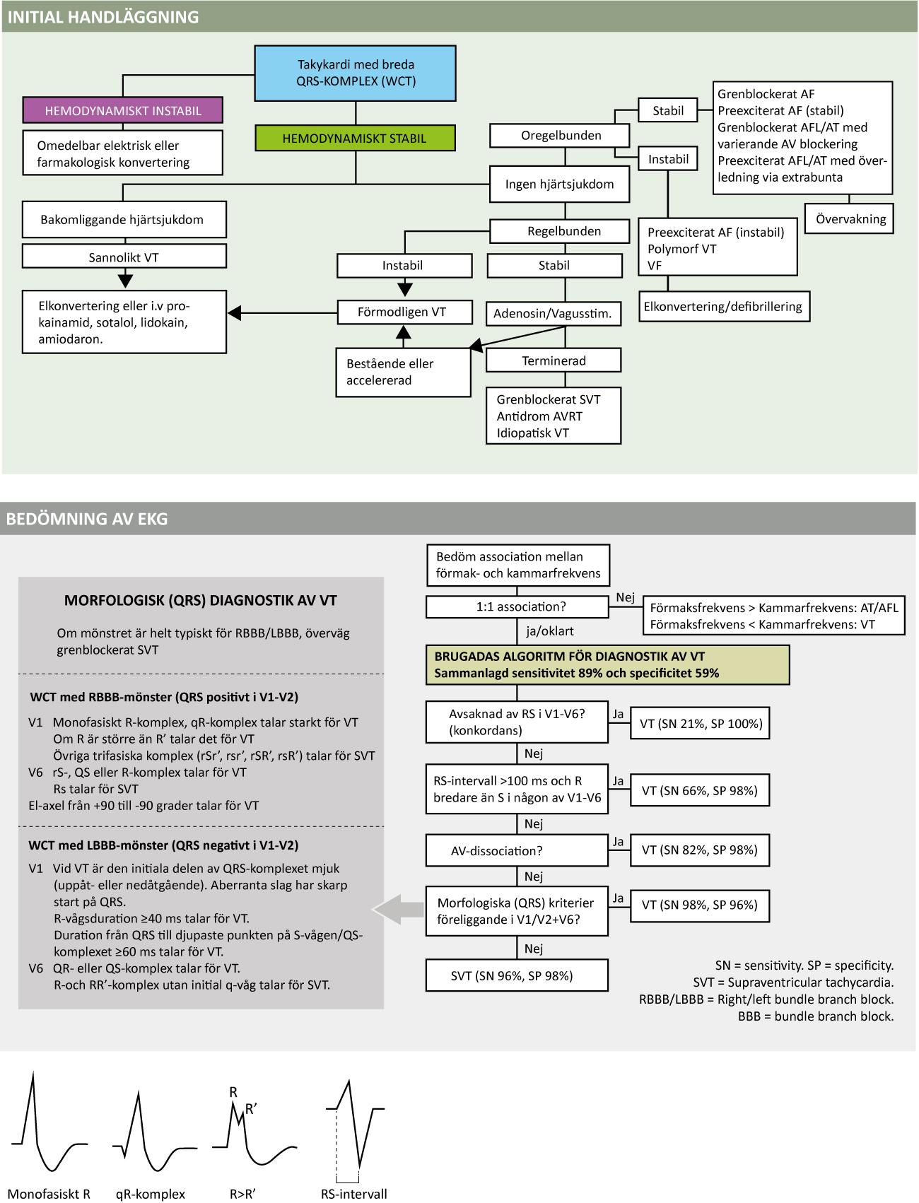 Figur 62. Diagnostik och handläggning av takyarytmi med breda QRS-komplex.