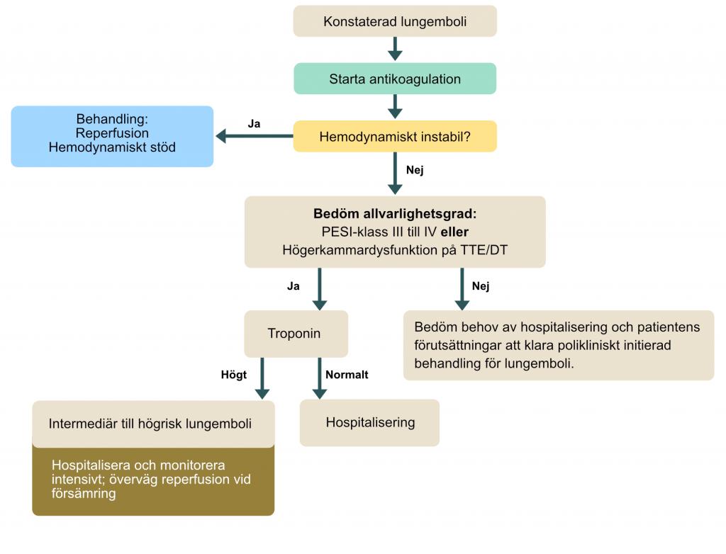 Algoritm för behandling av lungemboli.